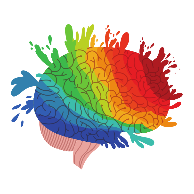 colored brain image